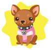 Chihuahua plushie