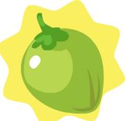 HG-Coconut