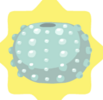 Blue Sea Urchin Shell