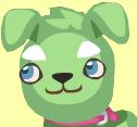 Dog head 2