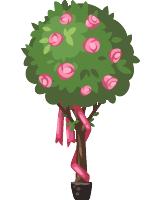 Romantic roses topiary