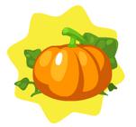 HG-Pumpkin