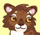 Leopard head 1