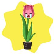 Homegrown talking tulip