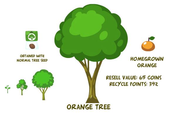 Orange tree summary