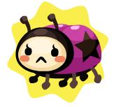 Little mais ladybug