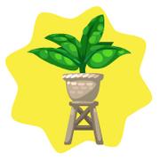 Raised potted plant