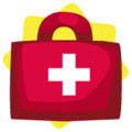 Carryable First Aid Kit