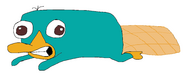 Perry paint