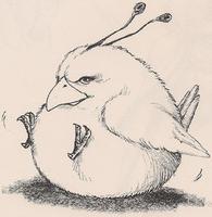 Toyo chirper