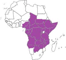 UEACR map