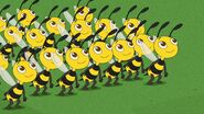 Bees ready to dance