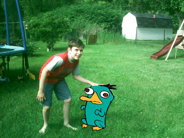 File:Perry is real.jpg