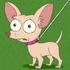 Pinky avatar