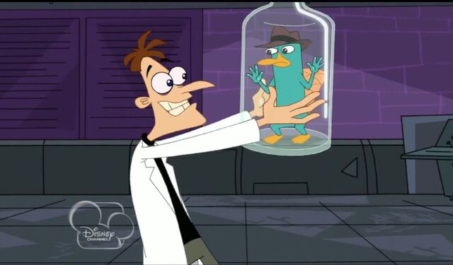 File:Bottled perry.jpg
