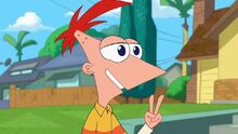 Phineas says in two weeks.jpg
