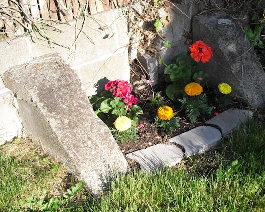 File:RRabbit42's pocket flower bed.jpg