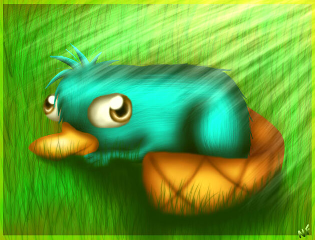 File:Perry, by Honeysucle10.jpg