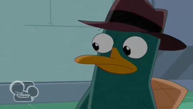 File:PerryShocked.jpg