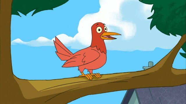 File:Bird in a tree.jpg