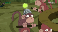The Monkey Enslave-inator helmet on the head of a monkey.