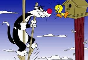File:Sylvester4.jpg