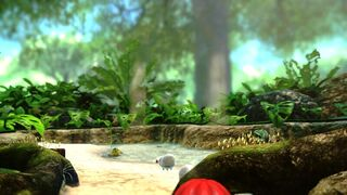 Tropical Wilds 3