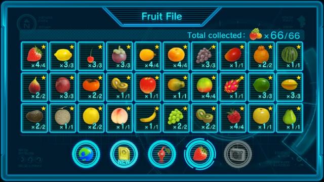 File:Fruit list.png