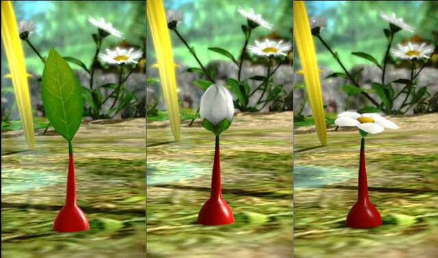 File:Pikmin Stages.jpg