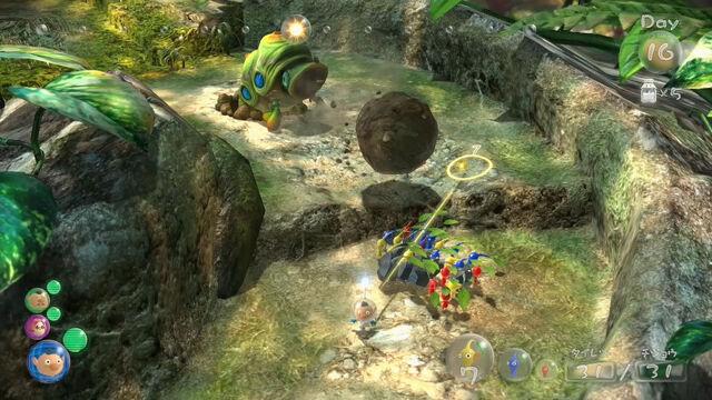 File:Cannon Beetle P3.jpg