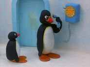 Pingu'sDiscovery3