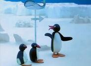 PinguontheSchoolExcursion2