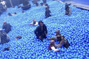 BlueballsBTS