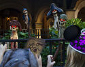 DisneyParksBlogAPiratesAdventure6