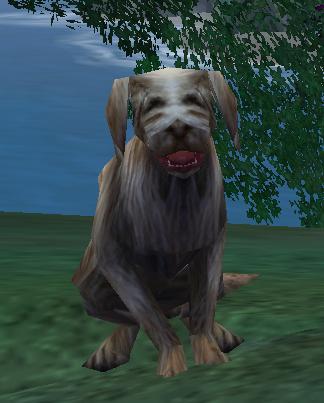 File:Outcast Dog.jpg