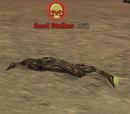 Sand Stalker