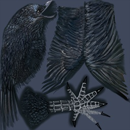 File:Raven's Texture.jpg