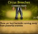 Circus Breeches