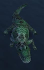 File:Bite(Alligator).jpg