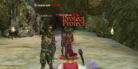 Hex Guard