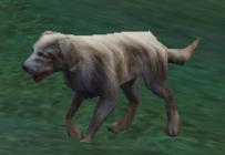 File:Dog Walking.jpg