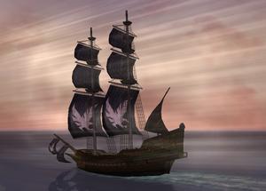 Full sail2