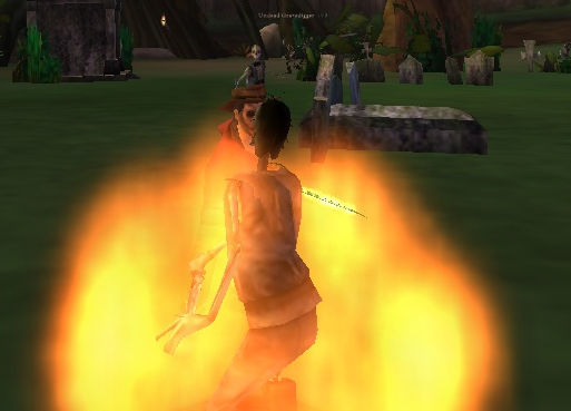 File:Cursed fire5.png