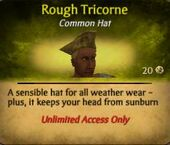 Rough Tricorne