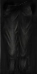 File:FP pant short pants baroness copy.jpg