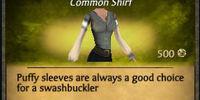 Swashbuckler Top