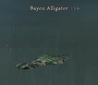 Bayou Gator