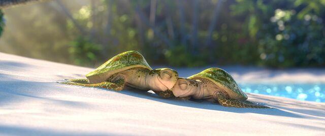 File:Lava-Still-CR-Turtles.jpg