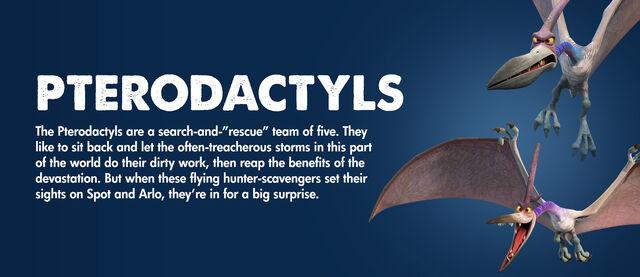 File:Pterodactyls Information.JPG
