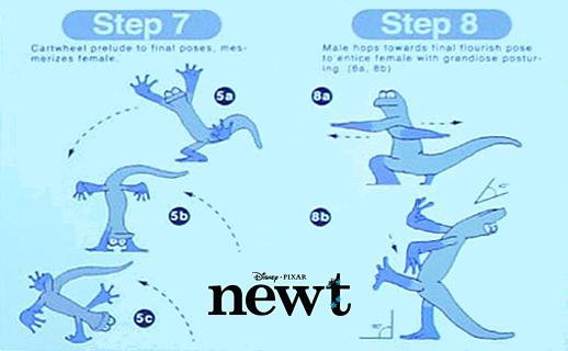 File:Newt concept art.png